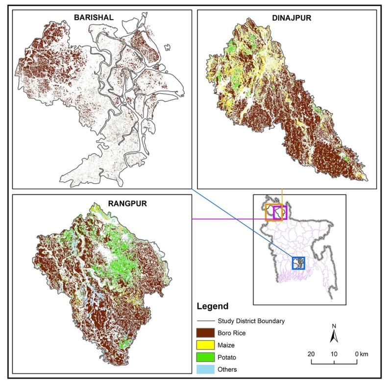 Crop data of Barisal, Dinajpur and Rangpur districts of Bangladesh - 2019